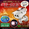 防犯カメラや防犯プレートと併用で効果UP ダミーカメラ 人感検知ソーラーバッテリー付 (OS-173F)