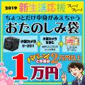 2019お楽しみ春