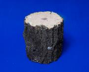 クヌギ産卵木Lサイズ1本 太さは約11センチ前後