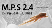 BOTTOMUP ボトムアップ 「MPS 2.4 エムピーエス」【クリックポスト送料発送可】