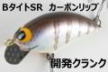 開発クランク 「Bタイト SR カーボンリップ」【クリックポスト発送可】