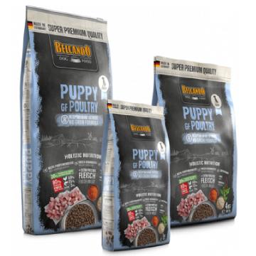 訳アリ 賞味期限が10月のため[ベルカンド] パピー グレインフリーポートリー 幼犬用(小粒) 12.5kg ドイツ産 無添加ドックフード