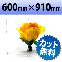 アクリル板(キャスト板) 透明-600mm× 910mm 厚み6mm