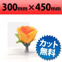 塩ビ板 透明 300×450mm 厚み1mm(クリア/加工/オービター/orbiter/通販)