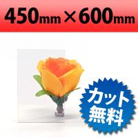 塩ビ板 透明 450×600mm 厚み2mm(クリア/加工/オービター/PVC/合成樹脂/orbiter/通販/送料が安い)