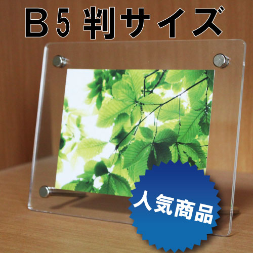 シンプルタイプフォトフレームフォトフレーム B5判サイズ 232×307mm(写真サイズ182×275mm)国産高級品クリア/透明写真立て