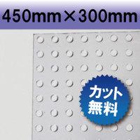塩ビパンチ板 透明色 クリアカラー 450×300mm 厚み3mm