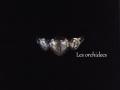 アンティーク ハート ローズカットダイヤモンドリング