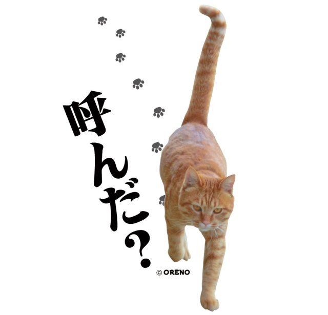 厚手キャンバストートバッグ「呼んだ?」猫柄UP画像