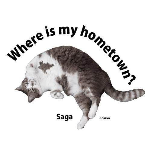 佐賀模様猫画像