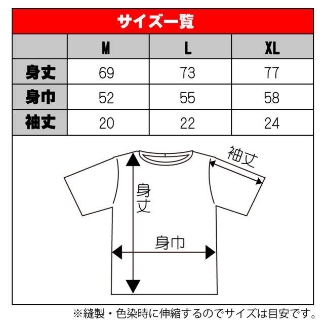 Tシャツサイズ表MLXl