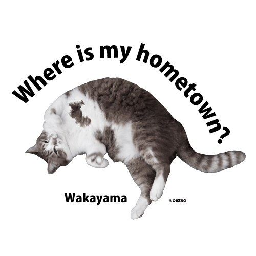 和歌山模様猫画像