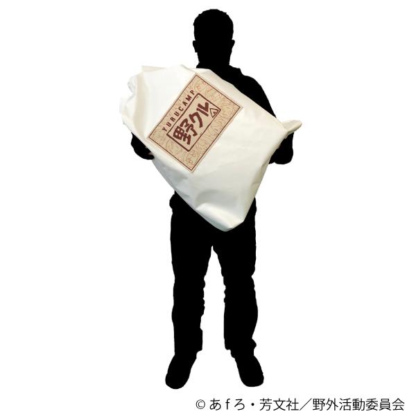雑袋サイズ感