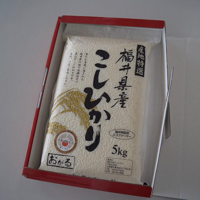 【贈答用送料無料】 福井県産30年度 コシヒカリ 精米5kg 農薬節減栽培 真空パック