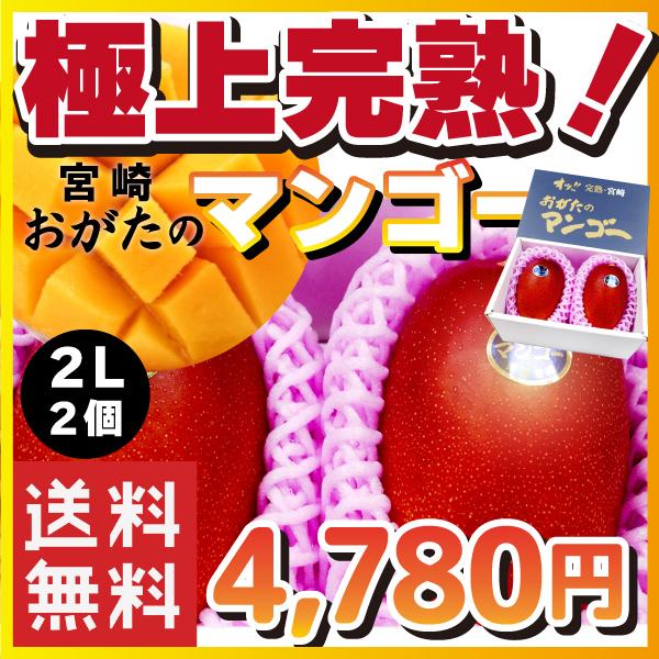 【宮崎県産】オッ!! 完熟・宮崎 おがたのマンゴー 送料無料! 贈答用 2Lサイズ2個入り