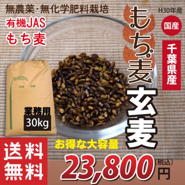 国産 有機JASもち麦 玄麦もち麦 玄もち麦 千葉県産100% 30kg 業務用 お得な大容量(小分け不可) 送料無料(沖縄・離島を除く)