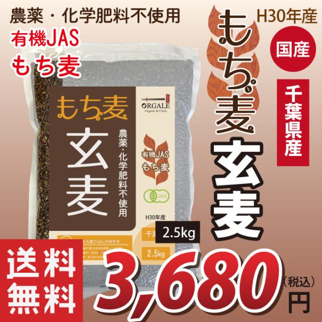 国産 有機JASもち麦 玄麦もち麦 玄もち麦 千葉県産100% 2.5kg 業務用 お得な大容量(小分け不可) 送料無料(沖縄・離島を除く)
