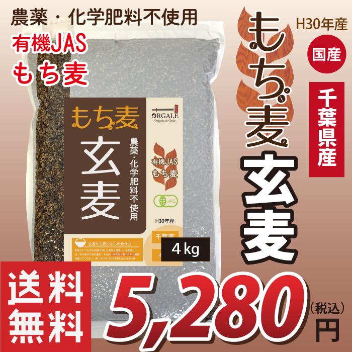 国産 有機JASもち麦 玄麦もち麦 玄もち麦 千葉県産100% 4kg 業務用 お得な大容量(小分け不可) 送料無料(沖縄・離島を除く)