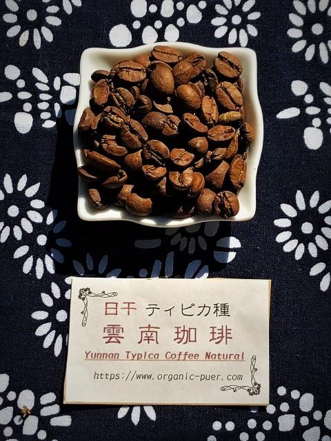 日干ティピカコーヒー