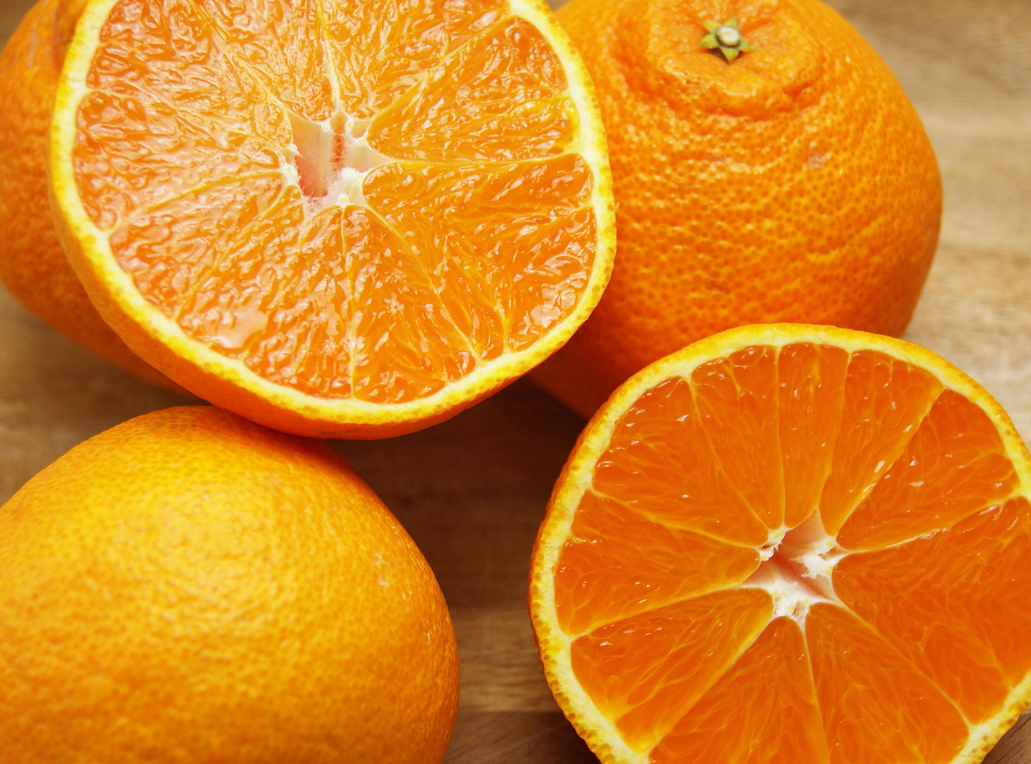 【しらぬい(有機肥料100%・ノーワックス) 3kg(家庭用無選別)】※農薬不使用レモン、無農薬レモン、コンフィチュール(送料無料商品は可)同梱不可