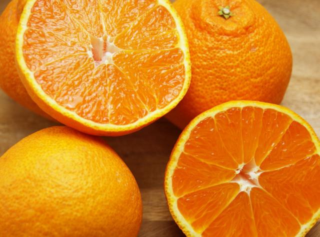 【しらぬい(有機肥料100%・ノーワックス) 5 kg(家庭用無選別)】※農薬不使用レモン、無農薬レモン、コンフィチュール(送料無料商品は可)同梱不可