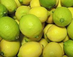 【農薬不使用(無農薬)レモン(ノーワックス 有機肥料100%】※万田酵素やミツカン酢の希釈液を噴霧するなど大切に育てられた果汁たっぷりの皮まで食べられるレモンです)※露地特別栽培エコレモン、みかん、ライム、コンフィチュール(送料無料記載の商品は可)との同