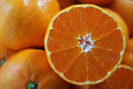 皮が薄く果肉と果汁がタップリの早生みかん