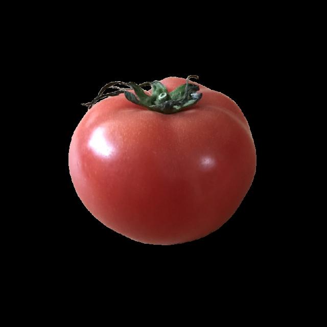 フルーツトマト 静岡/北海道産など  1個