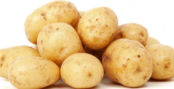 ジャガイモ 北海道など 1パック=約500g