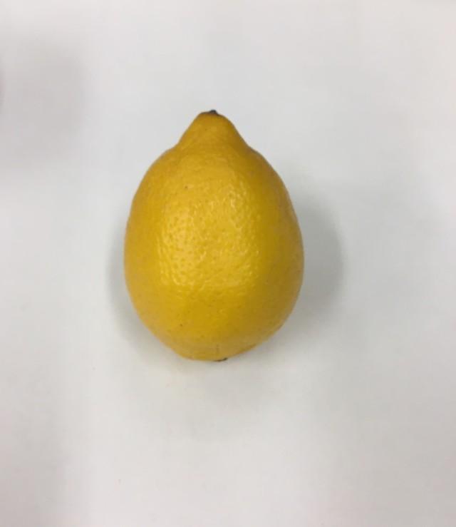レモン アメリカ産 1個 (140玉サイズ)*1個の重量約100g