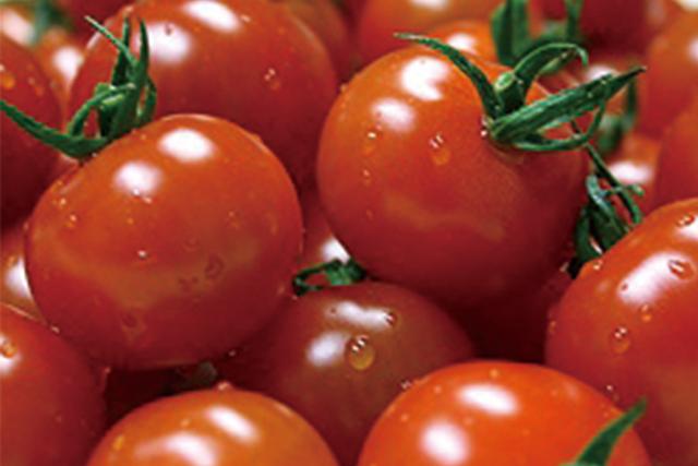ミニトマト 1パック=200g (愛知産など)