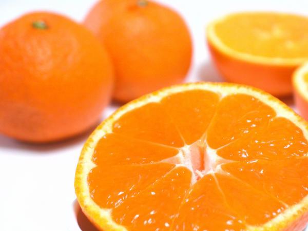 アメリカ産オレンジ 1個(88玉サイズ)*1個=約150g