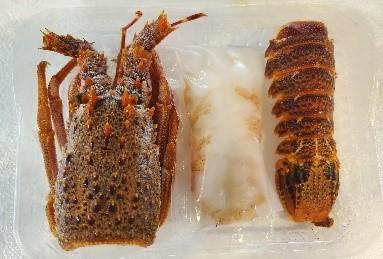 ロブスター生食用 1尾=約130g程度  産地:フランス 冷凍