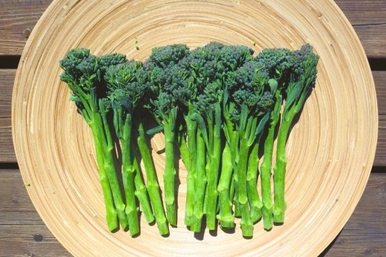 茎ブロッコリー スティックセニョール(北海道産など) 1パック