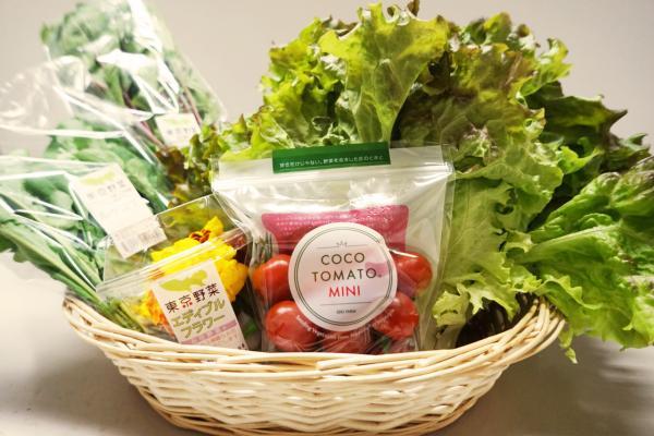 新鮮 東京野菜産直セット(9種類)
