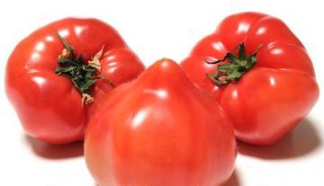 トマト 北海道産など 1パック 3~5個