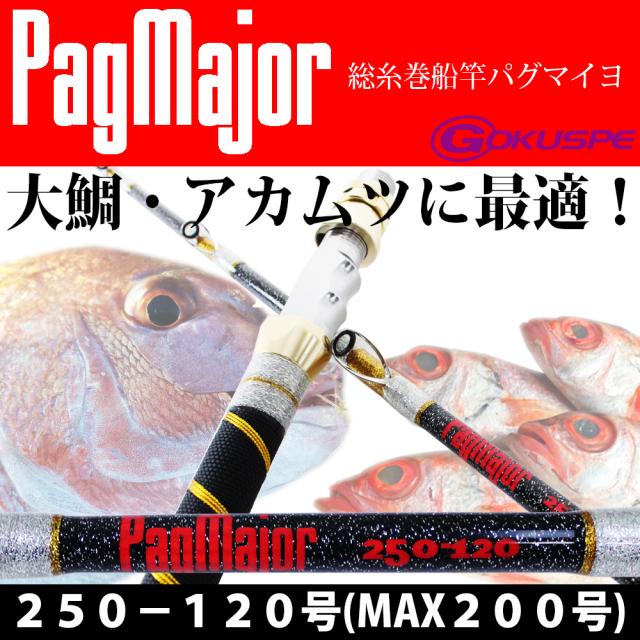 ☆ポイント10倍☆パグマイヨ (PagMajor)大鯛・大ヒラメ 青物兼用 総糸巻PagMajor250-120号 (290004)ゴクスぺ