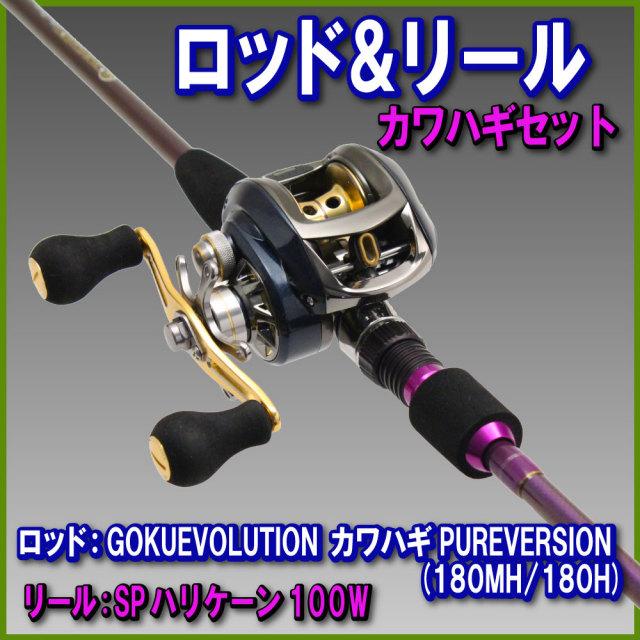 カワハギデビューセット【Gokuevolution カワハギ PURE VERSION 180 & SP ハリケーン 100W 右】 (rodreel-01)