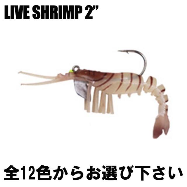"【Cpost】リアルなアクション ECOODA ライブシュリンプ2"" (LIVE SHRIMP) (basic-live2)"
