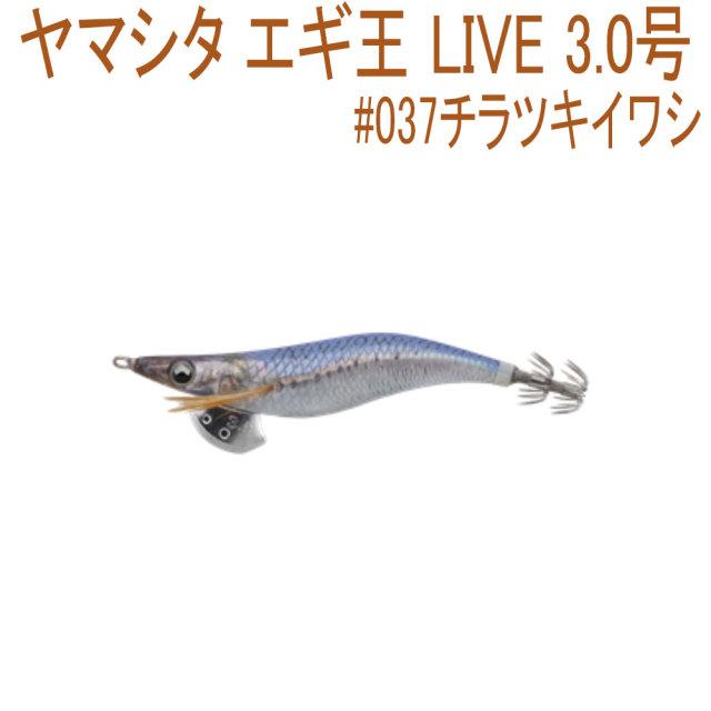 【Cpost】ヤマシタ エギ王 LIVE 3.0号 #037チラツキイワシ(yamaria-605686)