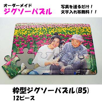 【メール便可】枠型ジグソーパズル(B5)  12ピース 2歳児頃からの知育に 【当店人気No.3】