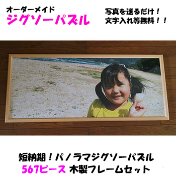 【送料無料】短納期!パノラマジグソーパズル(大型)1071ピース 木製フレームセット