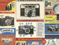 Cavallini & Co. ポスター ヴィンテージカメラ