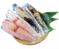 亀洋丸のお刺身用戻りかつおとかつおタタキのセット