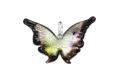 ランプワーク 蝶