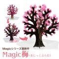 【メール便 送料無料】マジック梅 Magic桜