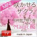 【メール便 送料無料】マジック桜ミニ Magic桜ミニ【日本製】 2~3営業日(土日祝日除く)で出荷