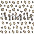 Amaily(アメイリー) ネイルシール  ひょう柄【No.5-27】 26805