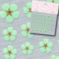 【春ネイル】【SHAREYDVA64135】シャレドワ/押し花ネイルシール5グリーン