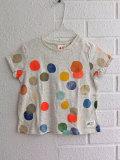 ベルギー子供服 AMERICAN OUTFITTERS アメリカンアウトフィッターズ AO76 カラフルドットTシャツ